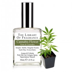 THE LIBRARY OF FRAGRANCE CANNABIS FLOWER