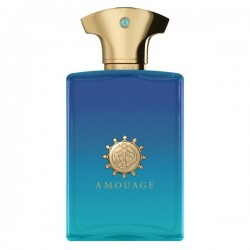 AMOUAGE FIGMENT MAN EDP 100 ML